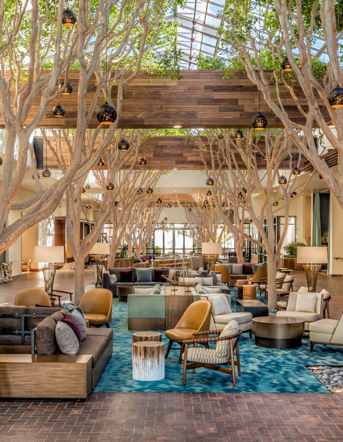 A canopy of trees inside the Portola Hotel & Spa at Monterey Bay.