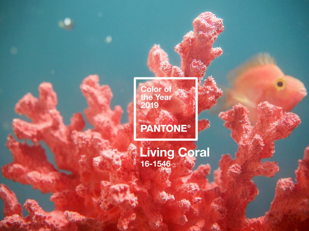 The 2019 Pantone Color of the Year: Living Coral (PANTONE 16-1546